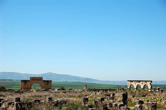 Marokko47 - Een eeuwenoud Romeins paradijs in Marokko: Volubilis