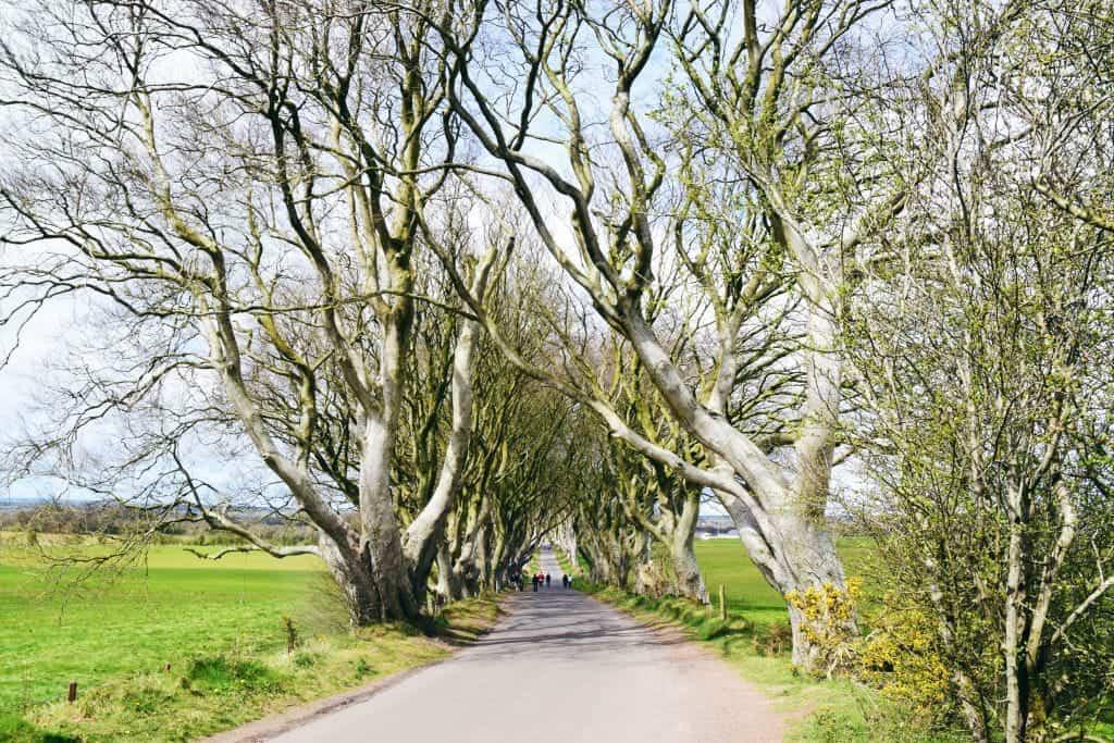 NortherIreland1 - Noord Ierland bezienswaardigheden: Dit zijn de mooiste plekken voor je road trip