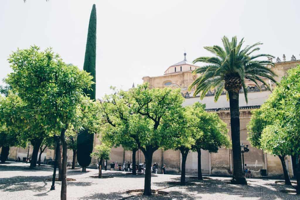 Cordoba6 - De 24 mooiste plekken in Andalusië: natuur, dorpjes & steden