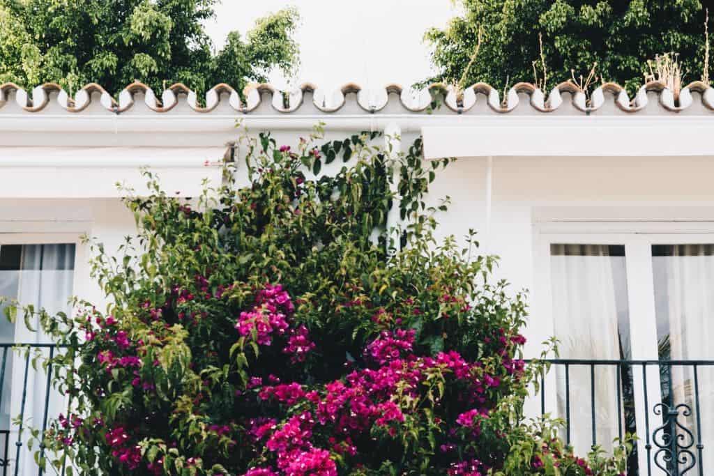MyVilla7 - Prachtig boetiekhotel in Marbella: My Villa Alexandra   Explorista's Top Hotels