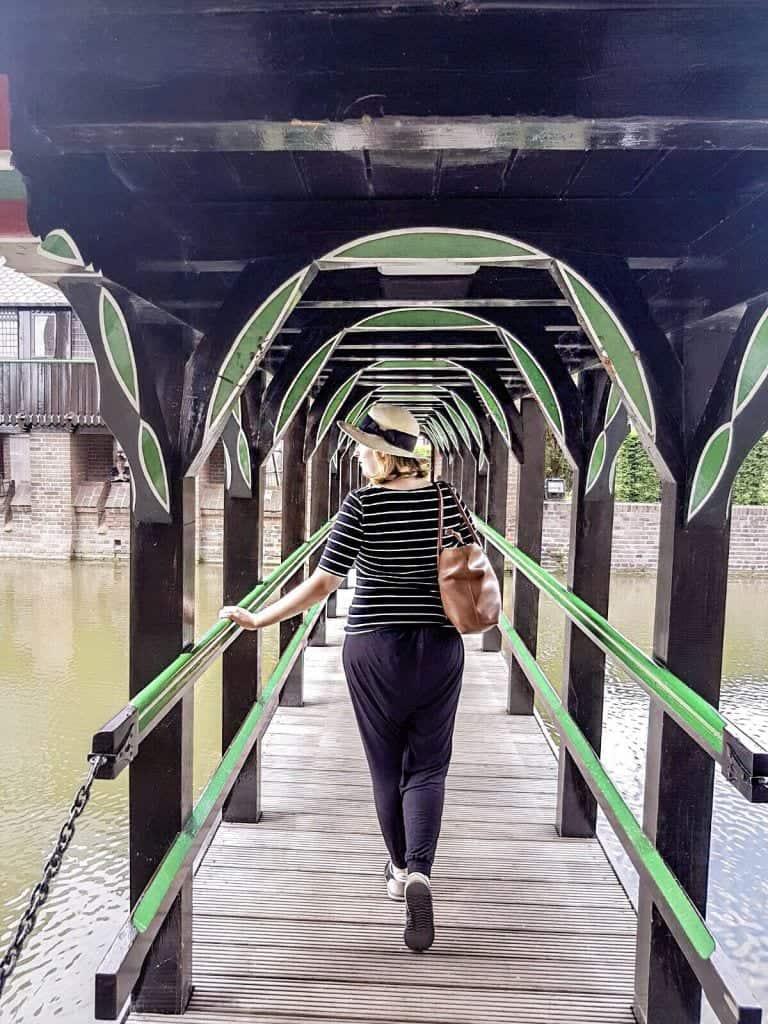 IMG 4915 - Juli 2017: huismus met plannetjes