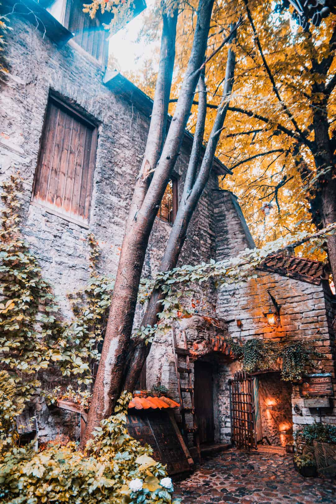 Talinn 201922 - Tallinn bezienswaardigheden: 16x wat te doen tijdens je stedentrip! (+ restaurant tips)