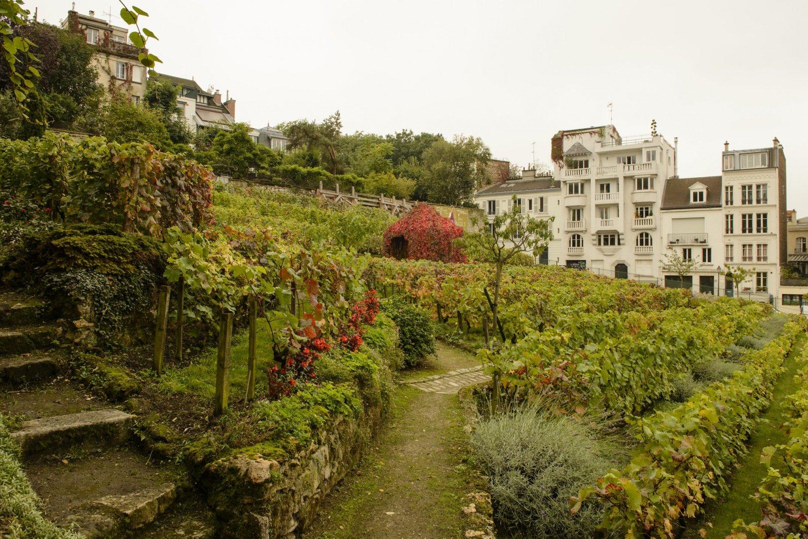 8189211422 47609ad070 k - Montmartre tips: mijn gids voor de meest romantische wijk van Parijs