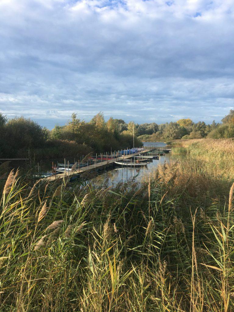 IMG 7201 e1572441531133 768x1024 - Explorista maandoverzicht 25: Nederland | Oktober 2019
