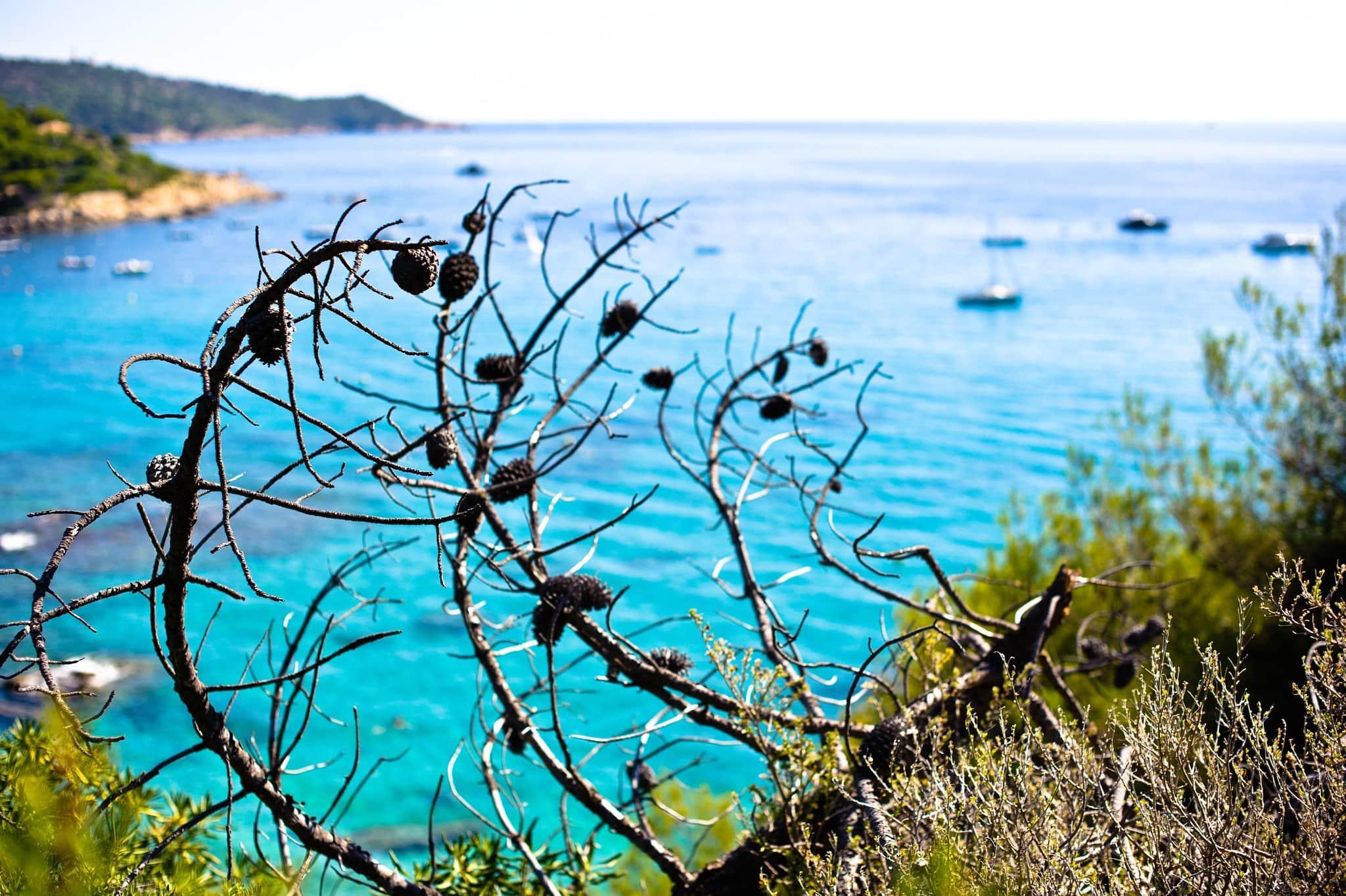 4995272915 33f19b844c k - Saint Tropez bezienswaardigheden: 9x wat te doen in deze miljonairsstad