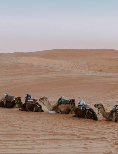Sahara13 385x500 - Sahara bezoeken vanuit Marrakech: 3-daagse route (+ hotel & tour tips!)